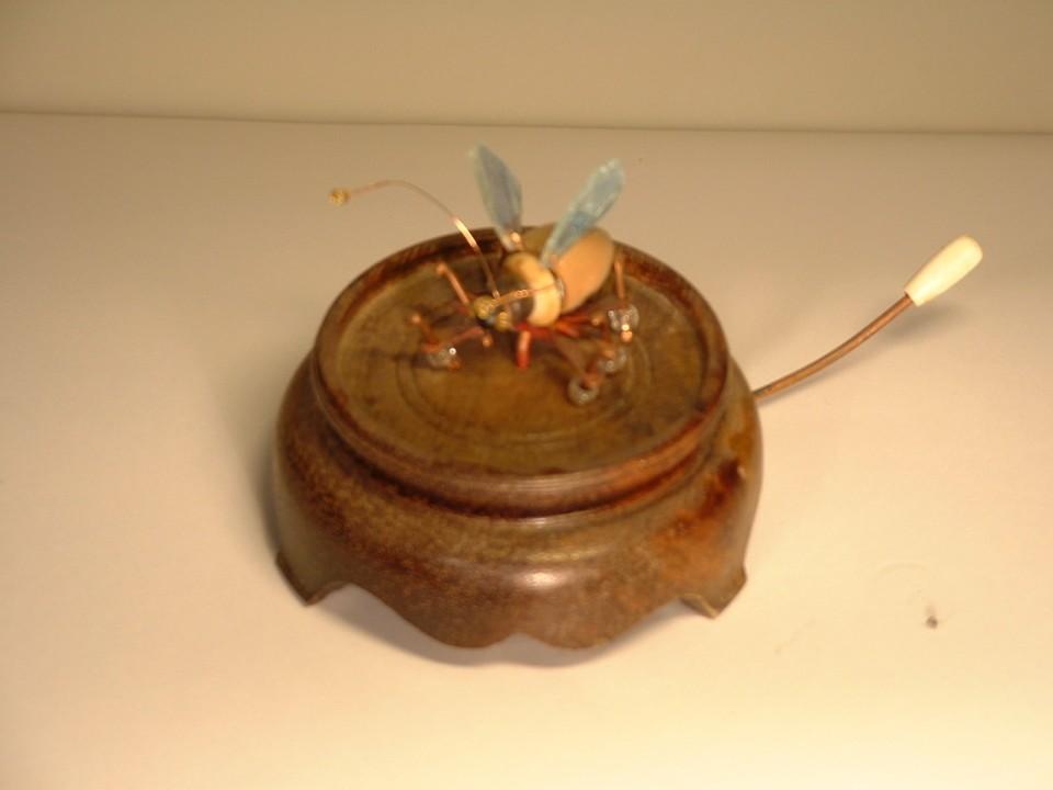 Bounce bug automata