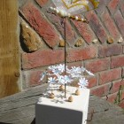 Dragonfly automata