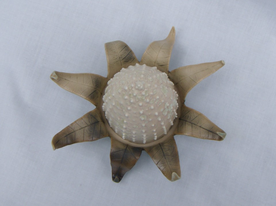 leaf urchin top view scuplture